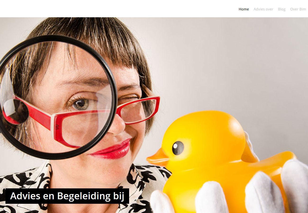 Bim van Dijk