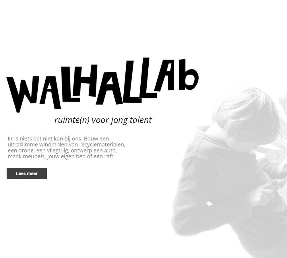 Website Walhallab