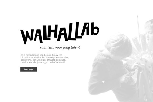 Website Walhallab
